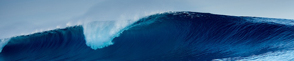 Is Social Entrepreneurship a Distraction? | Ride The Wave